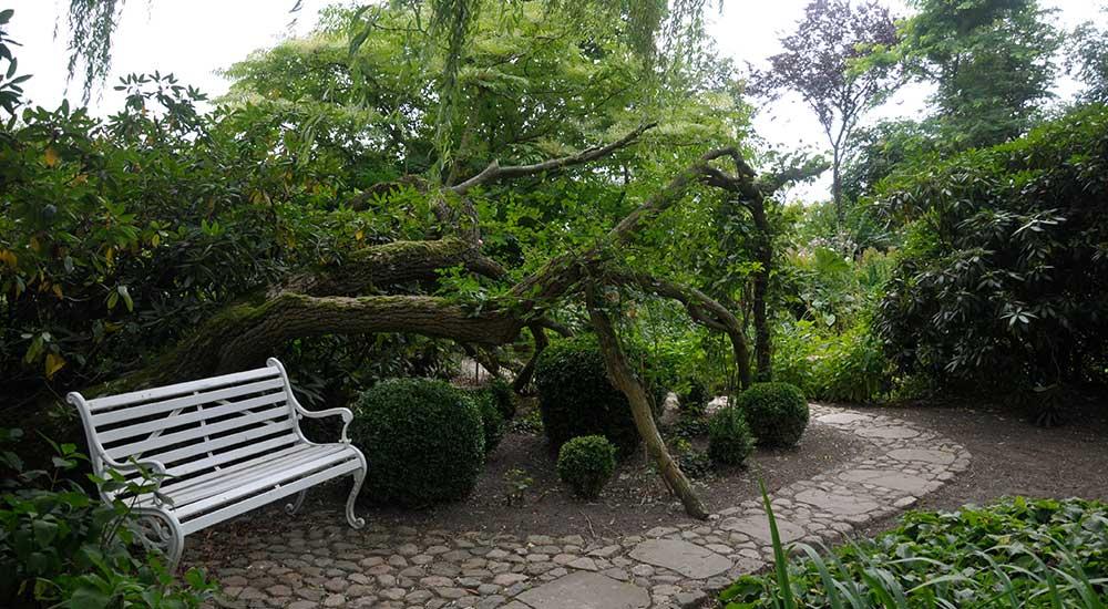 Gartenanlagen pflegen