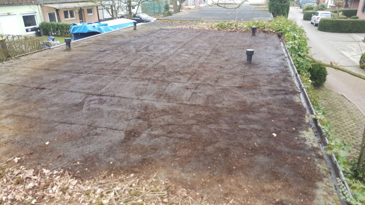 Reinigung von Garagendächern